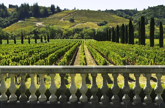 Sonoma wine, California Wine, Vineyards