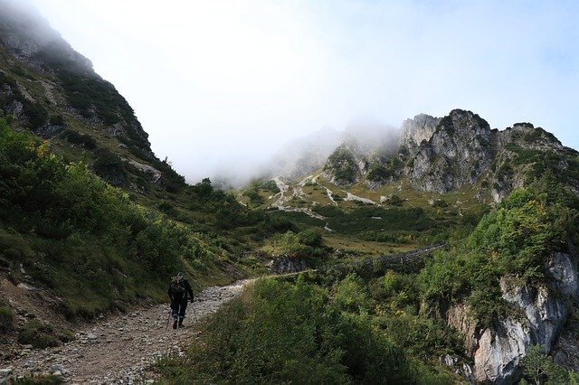 hiking travling backpack